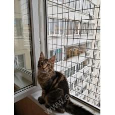 Решетка на окно антикошка